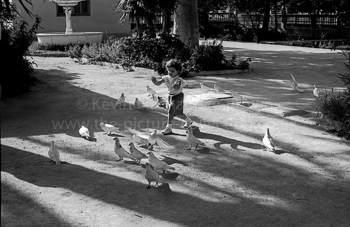CHILD PLAYS WITH DOVES  IN LA LINEA  SPAIN