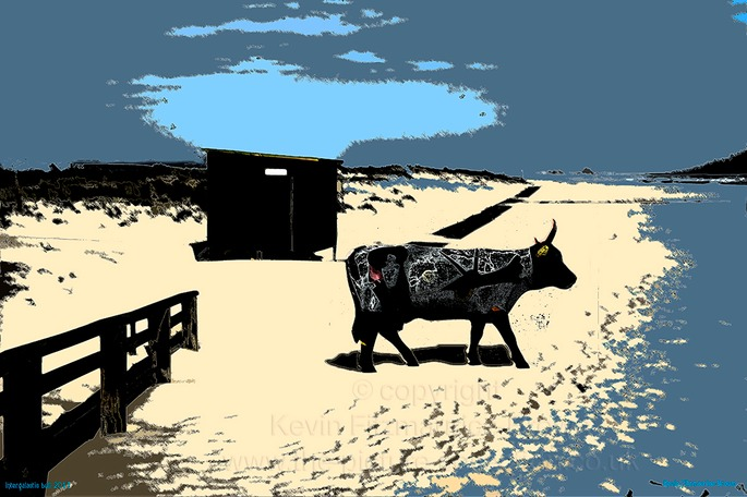MANTA ROTA  BEACH HUT AND COW ART INTERGALICTIC COW