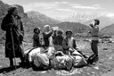 PHOTOGRAPHER NEWS KURDISH REFUGEES